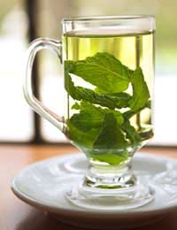 green herbal leaves in a cup of hot water - health benefits of herbs