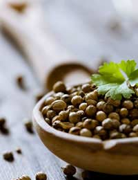 a bowl of coriander seeds with a green leaf placed on top